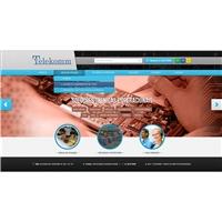 Site empresa Telekomm, Embalagem (unidade), Limpeza & Serviço para o lar
