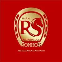 HARAS RECANTO DOS SONHOS, Logo, Consultoria de Negócios
