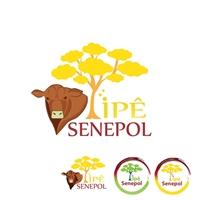 Ipê Senepol, Logo e Cartao de Visita, Alimentos & Bebidas