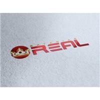 Baterias Real, Logo e Cartao de Visita, Metal & Energia