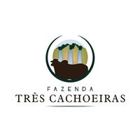 FAZENDA TRÊS CACHOEIRAS, Logo e Cartao de Visita, Animais