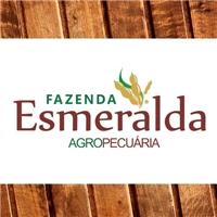 Fazenda Esmeralda, Logo e Cartao de Visita, Outros