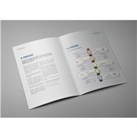 Inteligente Serviços em Tecnologia da Informação Ltda, Combo sua Marca no Topo, Contabilidade & Finanças