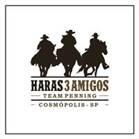 Haras 3Amigos, Logo, Animais