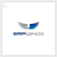 ERP Wings, Logo, Outros