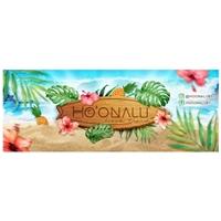 Ho'onalu- subtitulo Beach Trend (marca própria de roupas), Manual da Marca, Roupas, Jóias & acessórios