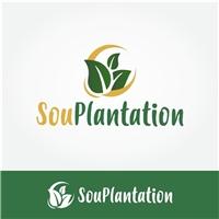 SouPlantation, Logo e Cartao de Visita, Saúde & Nutrição