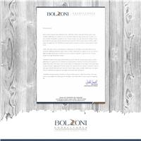 Bolzoni & Associados / Consultoria Logística & Cadeia de Suprimentos, Slogan, Consultoria de Negócios