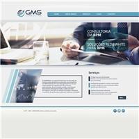 GMS Consultoria e Gerenciamento Ltda, Logo em 3D, Consultoria de Negócios