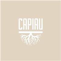 Capiau Store, Logo e Papelaria (6 itens), Roupas, Jóias & acessórios