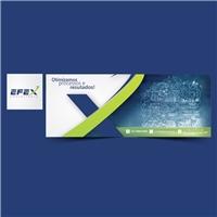 Efex Consultoria, Redesign de site, Consultoria de Negócios