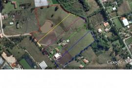Terreno industrial à venda Rio Pequeno, São José dos Pinhais - 57049.jpg