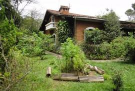 Casa à venda Chácara da Represinha, Cotia - 1375274121-DSC04832.JPG