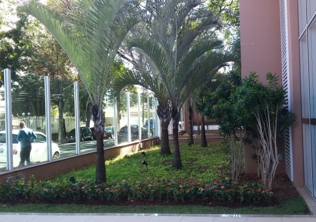 Apartamento Lapa direto com proprietário - Cristina - 635x447_98210935-20160717-120606.jpg
