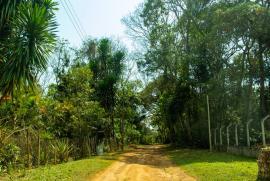Terreno à venda Condomínio Recanto da Serra, Piedade do Paraopeba - 1533101168-7-rua-do-terreno.jpg