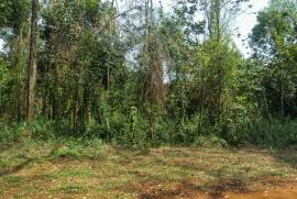 Terreno Condomínio Recanto da Serra direto com proprietário - Rachel - 755714912-11-frente-terreno-vista-3.jpg