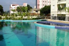 Apartamento à venda Vila Caminho do Mar, São Bernardo do Campo - 428552608-whatsapp-image-2019-09-15-at-16.jpeg
