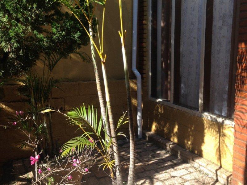 Casa à venda Cidade Universitária com 212m² e 3 quartos por R$ 710.000 - 1928125446-06-jardim.jpeg