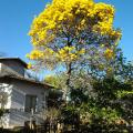 Áriston, que procura negociar um imóvel em Jardim Montreal Residence, Indaiatuba, em torno de R$ 460.000
