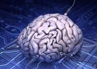 Cérebro humano conectado - aprendizagem digital