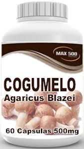 COGUMELO AGARICUS BLAZEI - 100 CAPSULAS