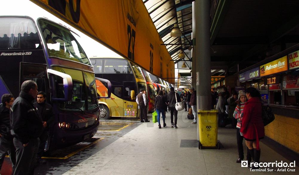 terminal sur - condor bus - linatal - richard - marco - zeus
