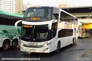 Condor Bus - 12