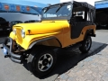 120_90_ford-jeep-willys-62-62-2