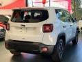 120_90_jeep-renegade-1-8-sport-aut-19-19-4