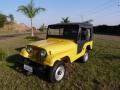 120_90_ford-jeep-cj-5-68-68-19