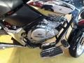 120_90_amazonas-lx-250-custom-08-09-1