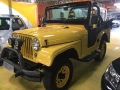 120_90_ford-jeep-willys-66-66-1-2