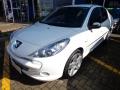 Peugeot 207 Sedan XR Sport 1.4 8V (flex) - 13/13 - 34.900