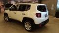 120_90_jeep-renegade-1-8-sport-aut-18-19-14