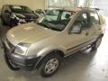 Ford EcoSport Ecosport XLS 1.6 8V - 04/05 - 19.900