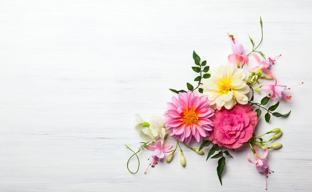 """Qué es """"la flor de la abundancia"""" y cómo funciona"""