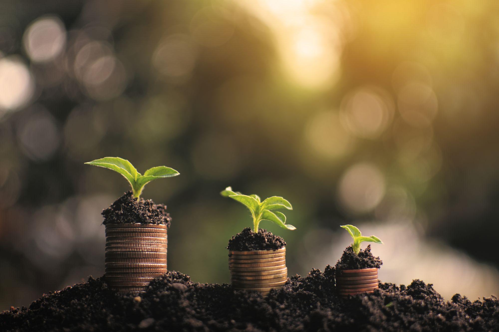 5 Formas de invertir tu dinero y ganar el doble