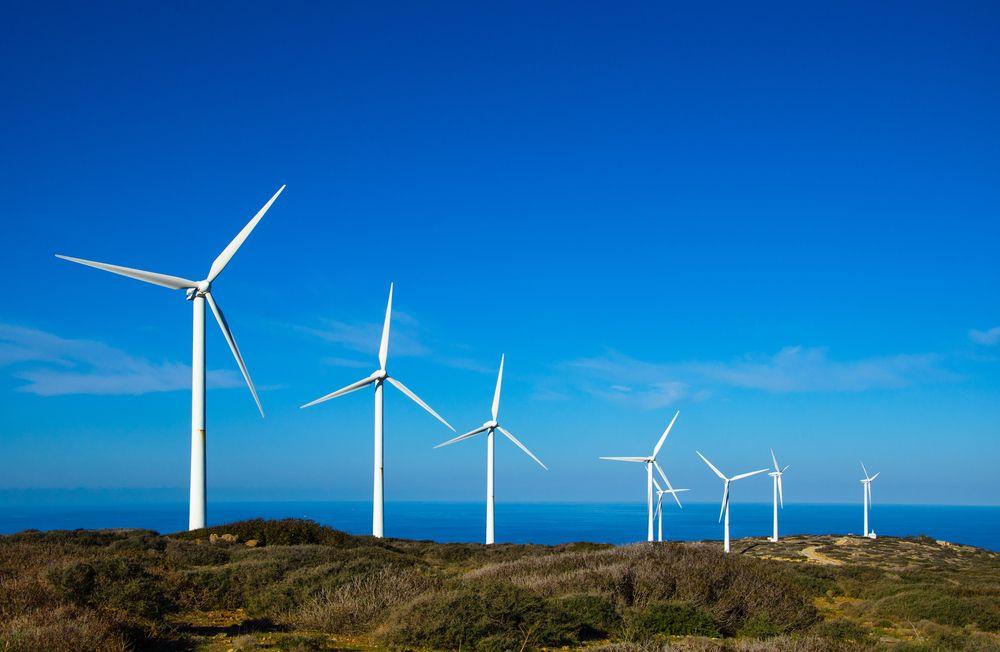 ¿Qué es la economía verde o ecológica y cuál es su importancia?