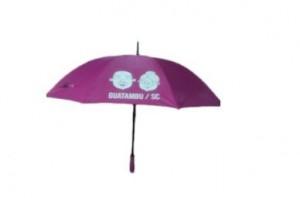 Guarda-chuva cabo reto