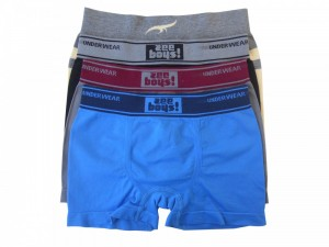Cueca Boxer Infantil Sem Costura Zee Rucci Kit 6