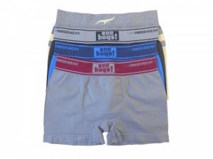 Cueca Boxer Infantil Sem Costura Zee Rucci Kit 10
