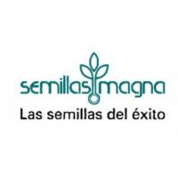 magna semillas