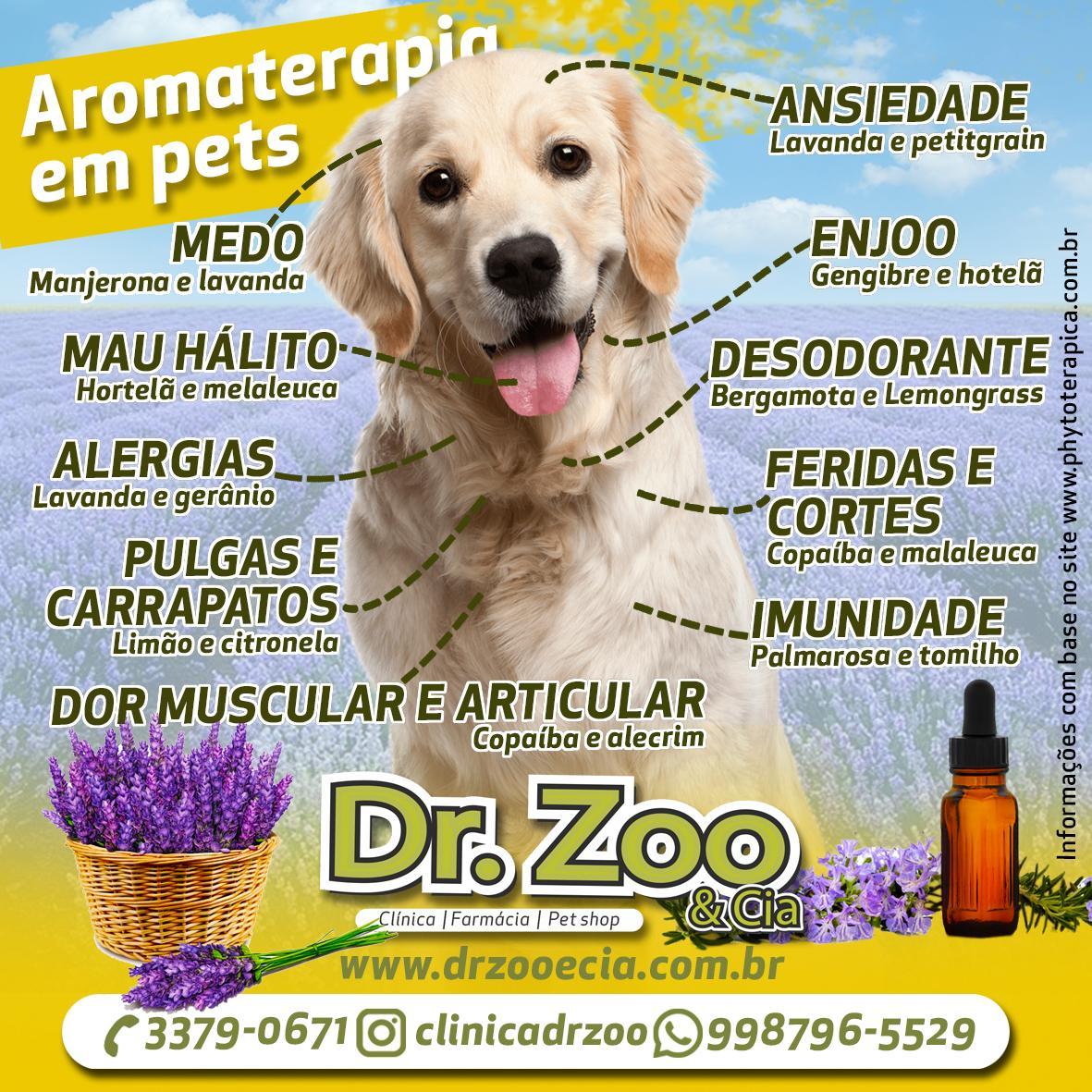 Aromaterapia para pets