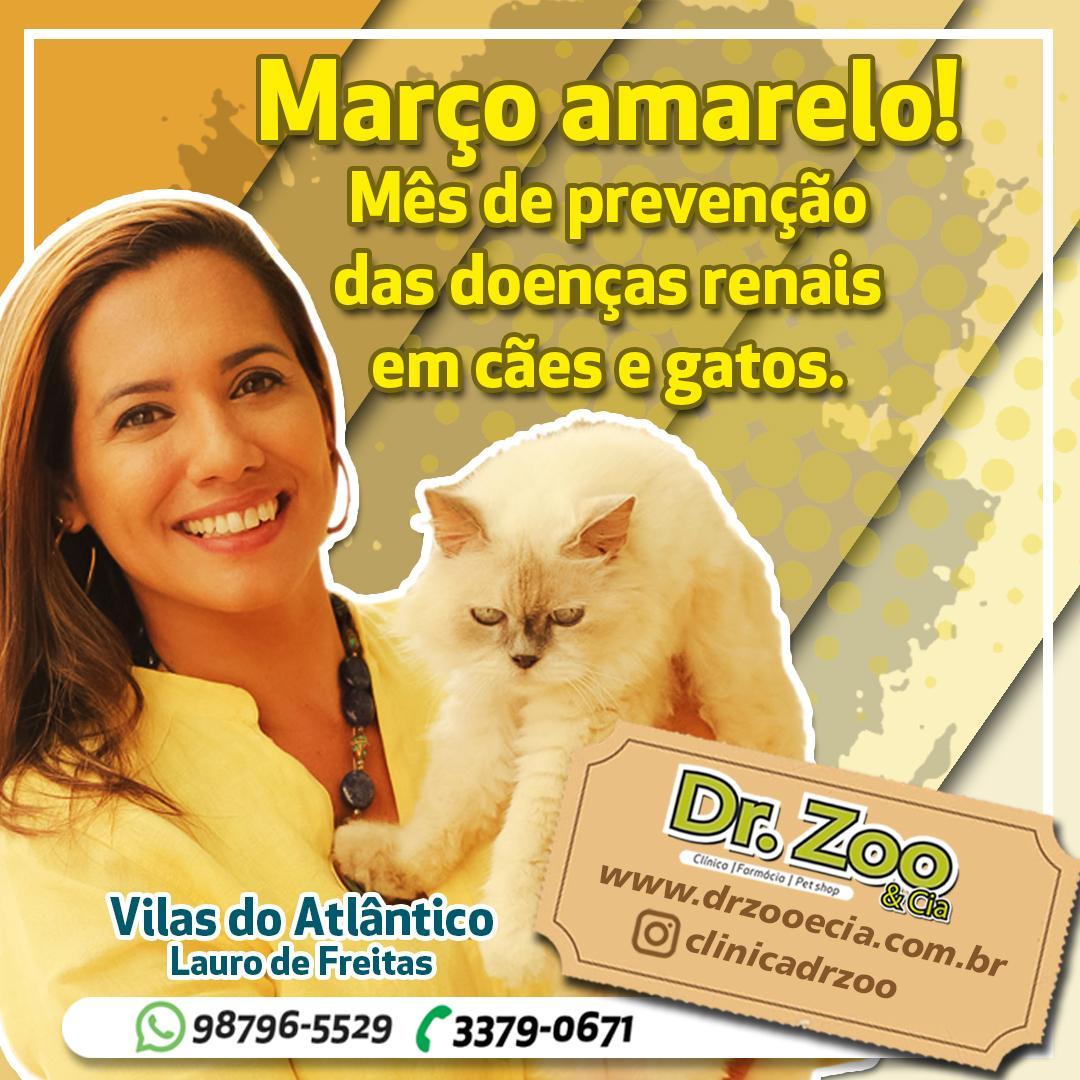 Março amarelo! Mês de prevenção das doenças renais em cães e gatos.