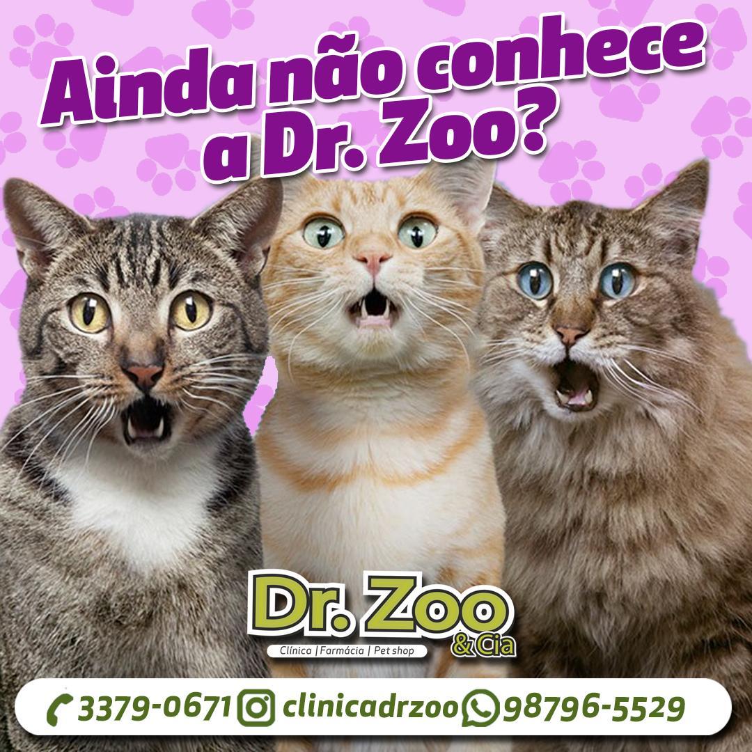 Ainda não conhece a Dr. Zoo?