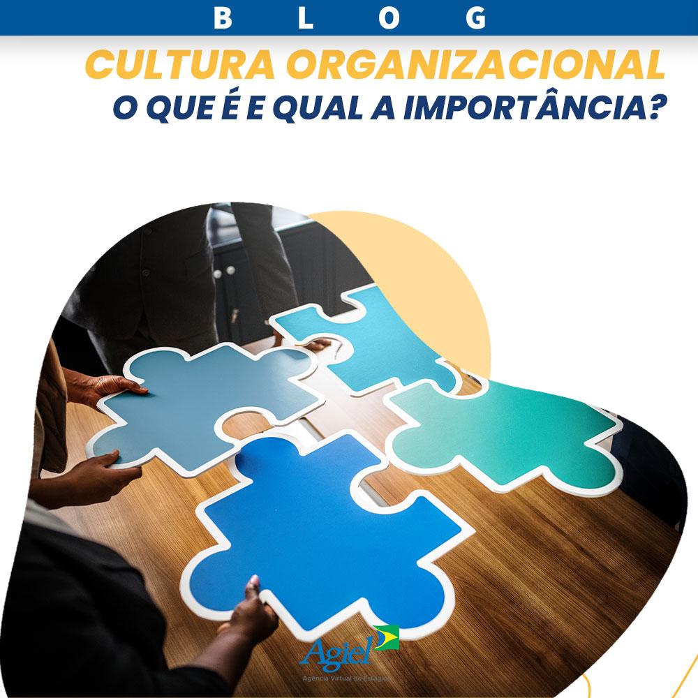 Cultura organizacional: o que é e qual a importância?