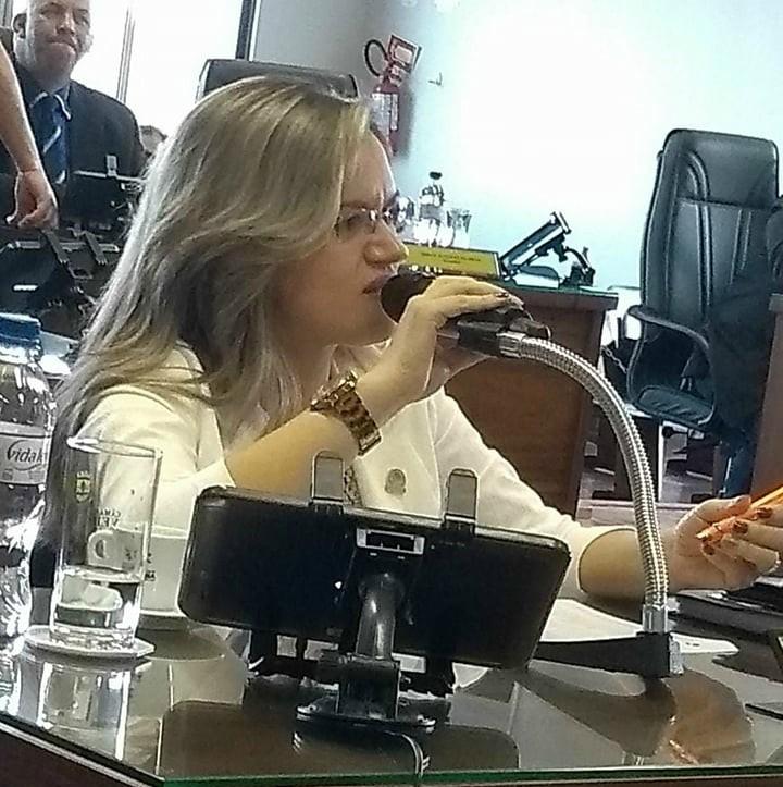 Vereadora Fernanda Garcia prioriza a inclusão e acessibilidade em suas proposições legislativas