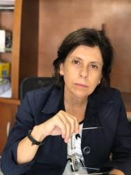 Frente Parlamentar de Enfrentamento ao Covid-19 realiza primeira reunião