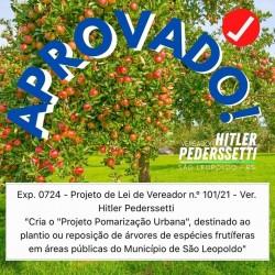 Pomarização, alimentos para as famílias, preservação e recuperação ambiental. O projeto de lei do vereador Hitler Pederssetti é aprovado!