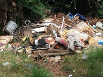 Arthur Schmidt - Audiência Pública sobre lixo extradomiciliar - 29/03/17